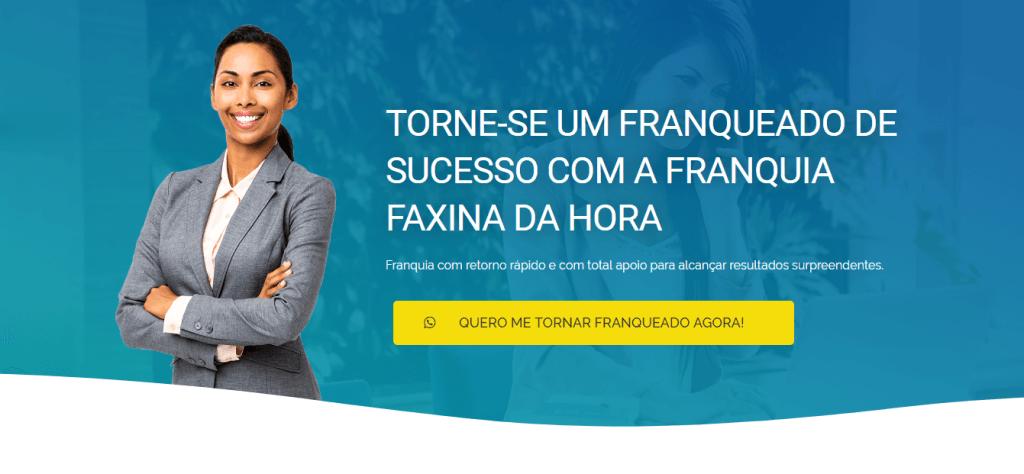 Franquia de serviço de limpeza ( Brasil )